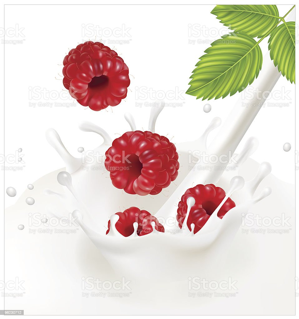 Ripe red raspberries falling into the milky splash. royalty-free ripe red raspberries falling into the milky splash stock vector art & more images of berry fruit