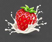 Yoghurt splash with ripe red strawberry berry fruit with green leaves, isolated on transparent grid background, dairy drink with spray and drops. Eps10 vector illustration.