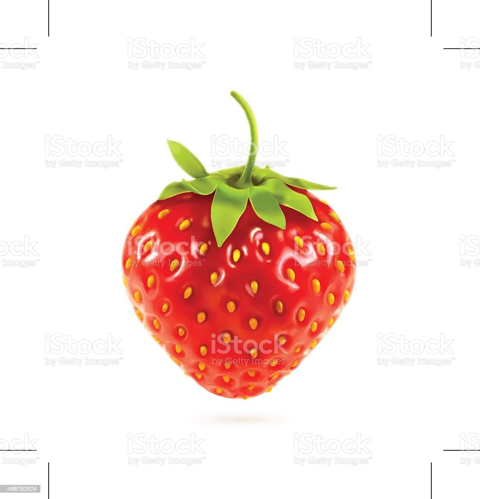 Ripe strawberry, vector illustration vector art illustration
