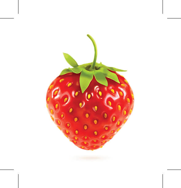 Ripe strawberry, vector illustration Ripe strawberry, eps10 vector illustration contains transparency and blending effects love potion stock illustrations