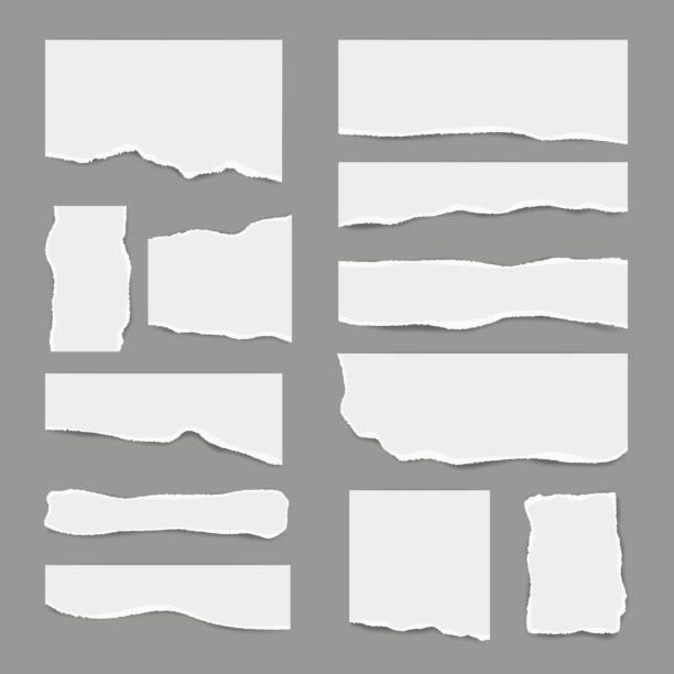 ilustrações, clipart, desenhos animados e ícones de papel branco rasgado. papel de nota da sucata clara rasgada para partes das notas imagens realísticas do vetor para bandeiras - papel