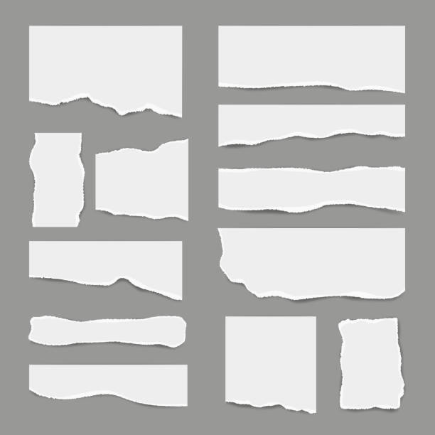ripped white paper. torn light scrap note paper for notes pieces vector realistic pictures for banners - paper stock illustrations