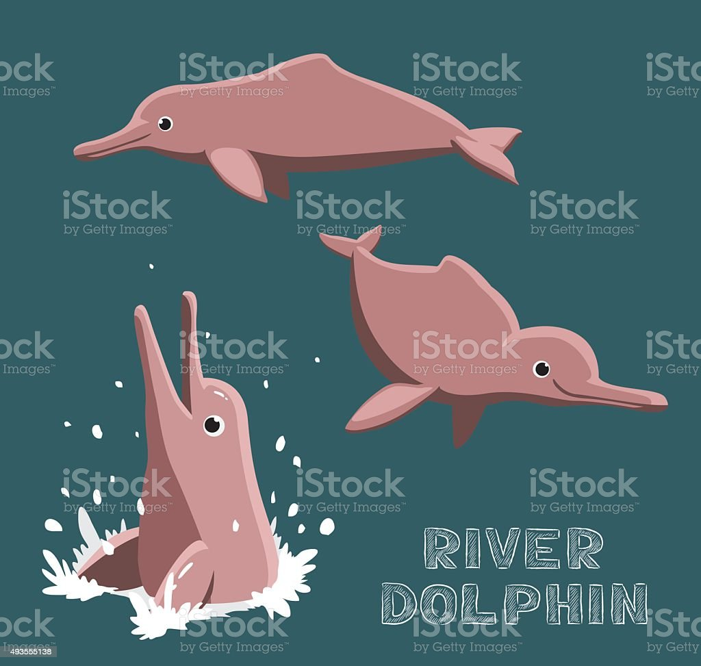 River Dolphin Cartoon Vector Illustration vector art illustration