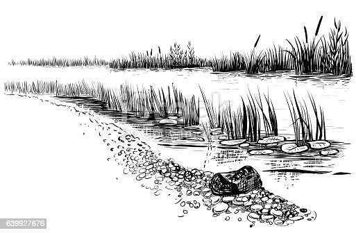Black and white vector illustration of river landscape. Bank of the river with reed and cattail. Sketchy style.