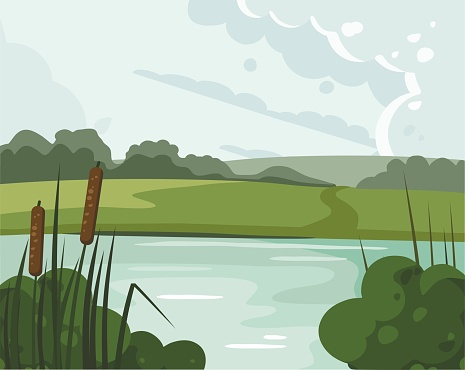 River landscape with reed. Nature vector illustration