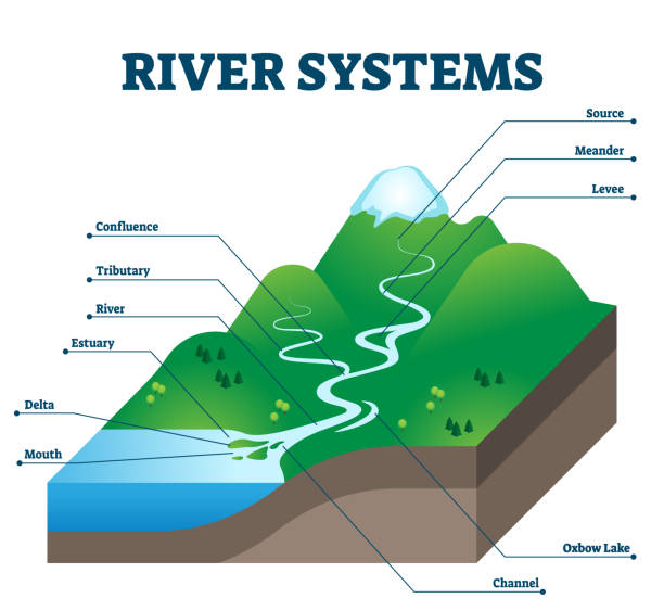 River systems and drainage basin educational structure vector illustration vector art illustration