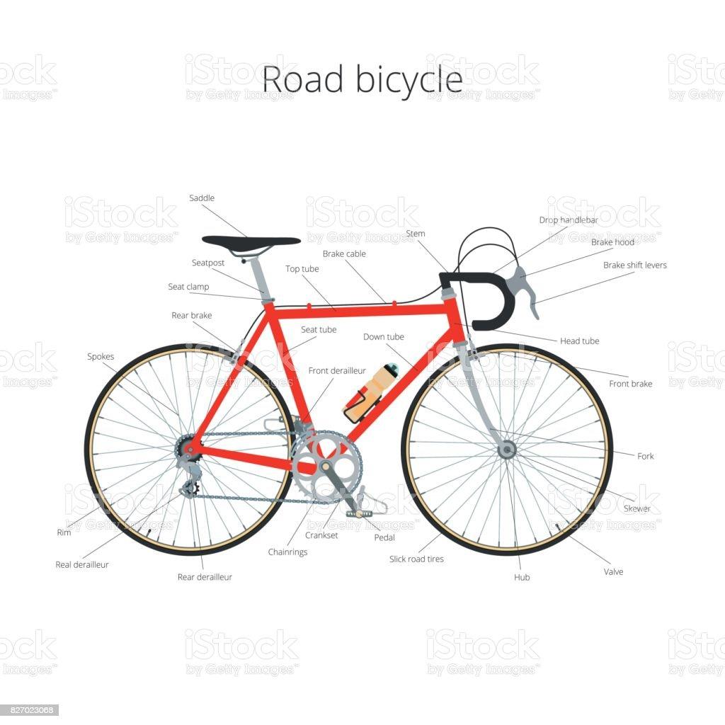 Ilustración de Partes Y Elementos De Infografía De Bicicleta De ...