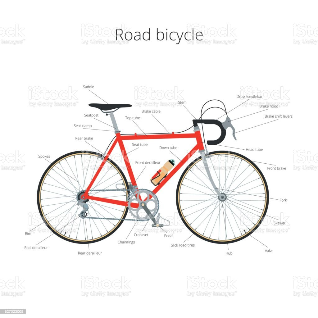 Road bicycle infographic elements and parts vector art illustration
