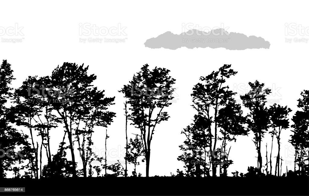 Road Side Treeline vector art illustration