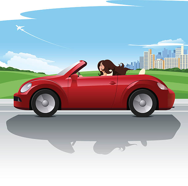 Road trip A young attractive woman driving her red car along the highway.  convertible stock illustrations
