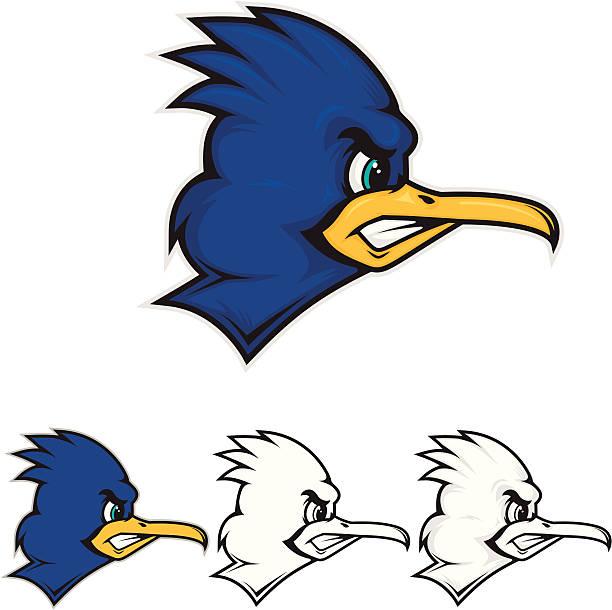 roadrunner mascot - cardinal mascot stock illustrations, clip art, cartoons, & icons
