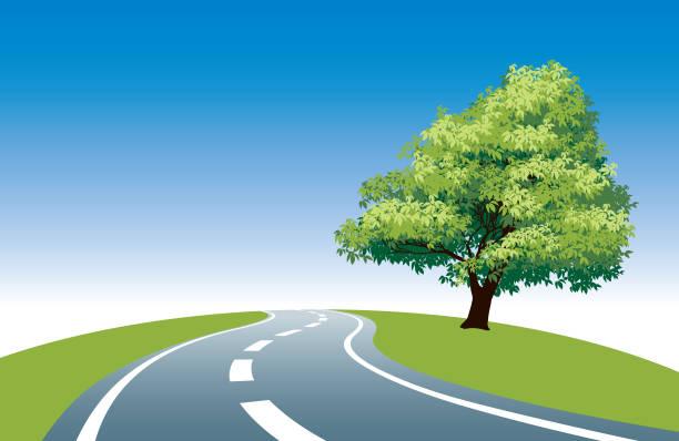 straßenrand tree - landstraße stock-grafiken, -clipart, -cartoons und -symbole