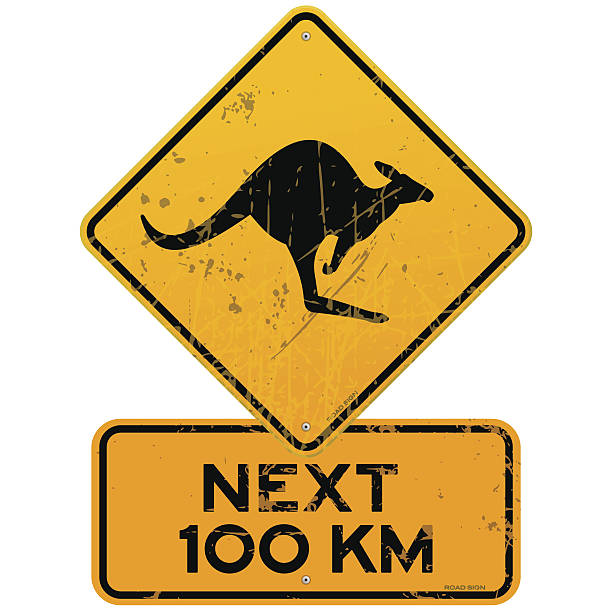 Roadsign Kangaroos Next 100 km Yellow Kangaroo roadsign with next 100 km additional table. EPS version 10 with transparency included in download. kangaroo stock illustrations