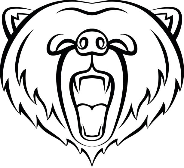 Best Grizzly Bear Roaring Illustrations, Royalty-Free