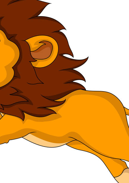 best roaring lion clipart pictures illustrations royalty