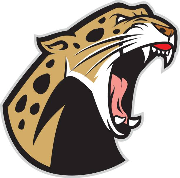 roaring leopard - jaguar stock illustrations
