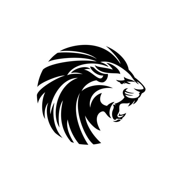76 Roaring Lion Face Side Illustrations Royalty Free Vector Graphics Clip Art Istock Select from premium lion outline of the highest quality. 76 roaring lion face side illustrations royalty free vector graphics clip art istock