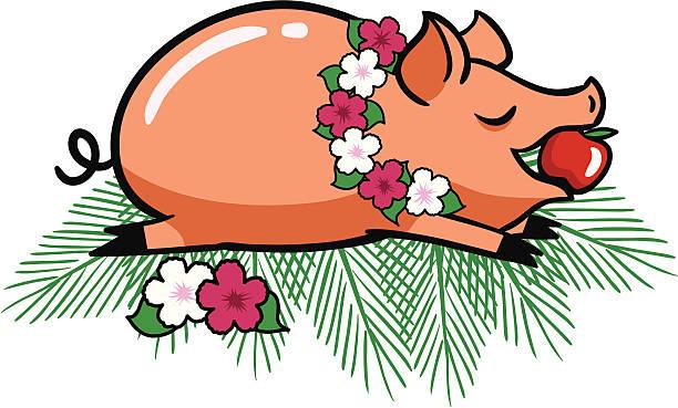roast luau-schwein - schweinebraten stock-grafiken, -clipart, -cartoons und -symbole