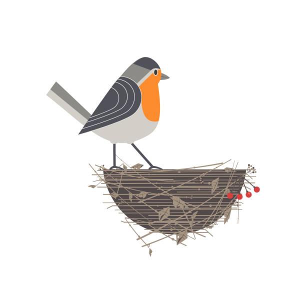 bildbanksillustrationer, clip art samt tecknat material och ikoner med robin fågel ikonen - bo