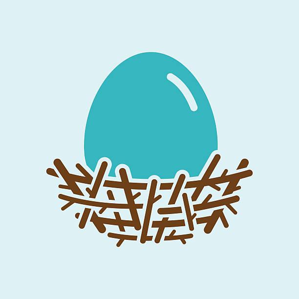 Robin Egg In Nest Robin's egg with nest icon. File type - EPS 10. nest egg stock illustrations