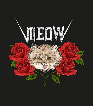 Rock and roll cat and roses. Typography graphic print, fashion drawing for t-shirts.Vector Illustration in modern style for clothes.