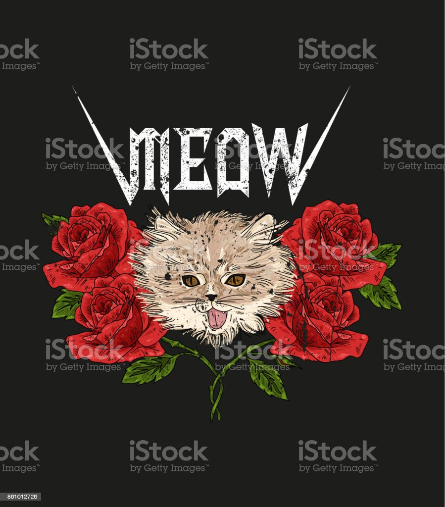 Rock and roll cat and roses. Typography graphic print, fashion drawing for t-shirts.Vector Illustration in modern style for clothes. vector art illustration