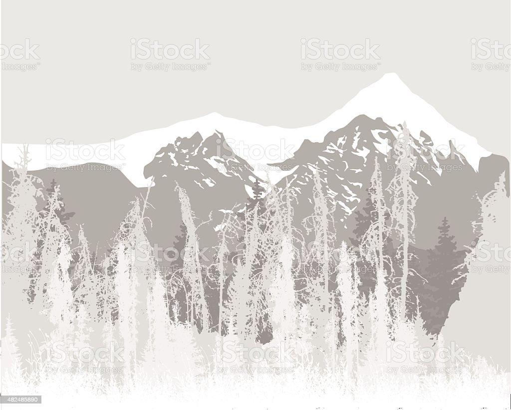 Rocky Mountain Pines vector art illustration