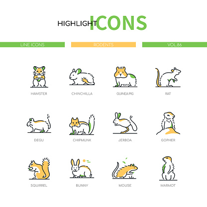 Rodents - modern line design style icons set