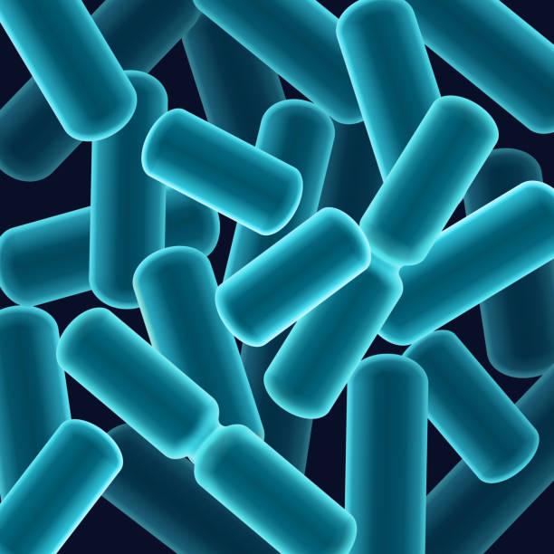 Rod-shaped bacilli bacteria Vector abstract blue rod-shaped bacilli bacteria close up top view bacillus subtilis stock illustrations