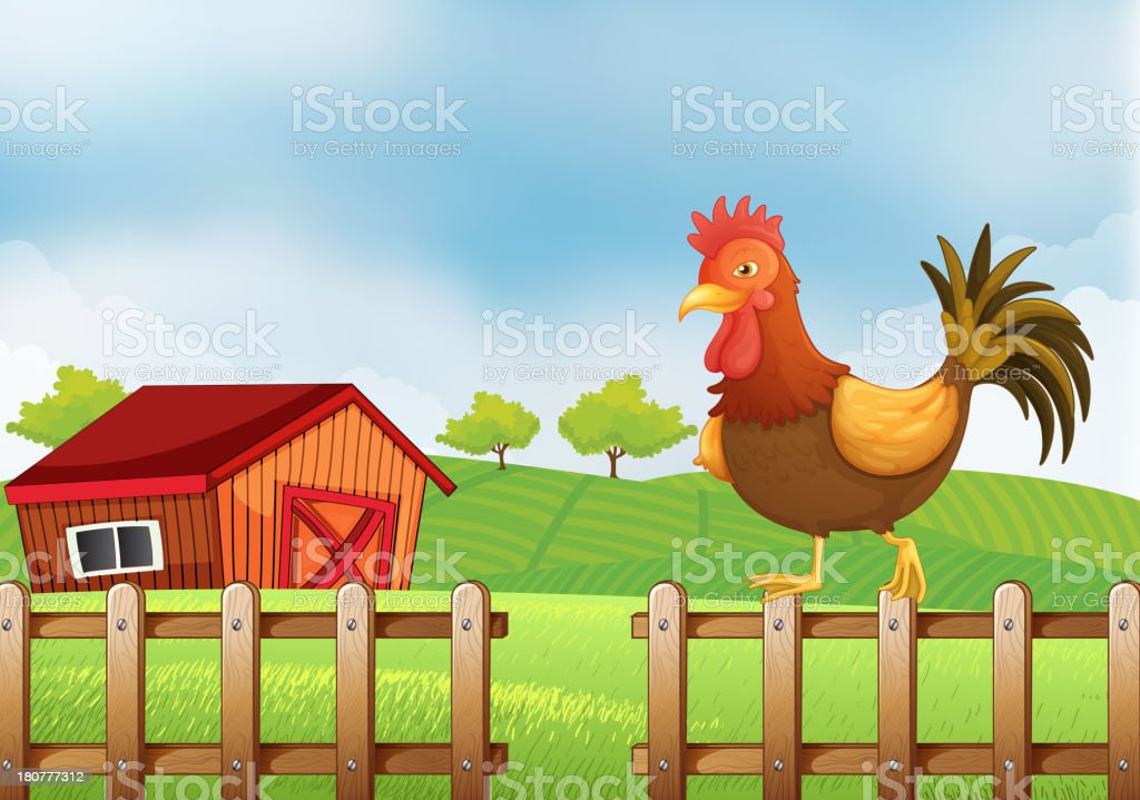 rooster above the fence royalty-free stock vector art