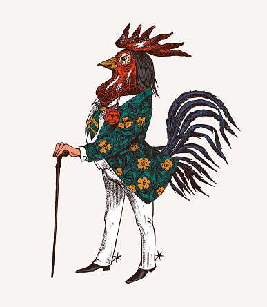 Rooster character with a cane and boots. Fashionable Aristocrat or Rich Man. Hand drawn fashionable cockerel. Engraved old monochrome sketch