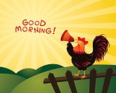 Rooster Crowing and Announcing with Megaphone, Good Morning