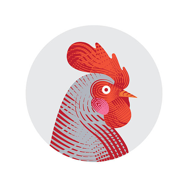 Rooster in engraving style Vector illustration of rooster. Engraving style. Logo, icon, greeting cards element for New Year's r design. Symbol of new year 2017.Chinese calendar. rooster stock illustrations