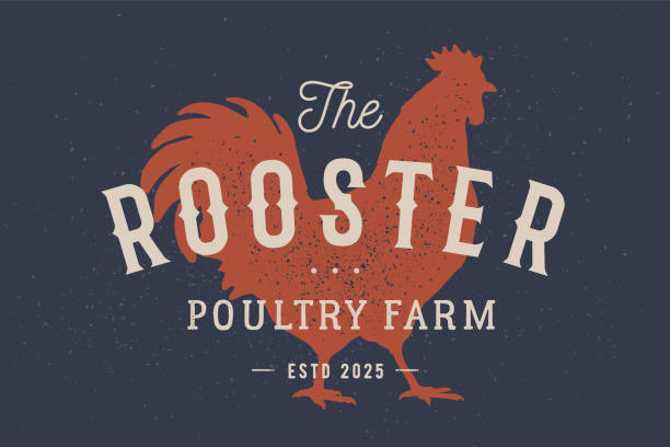 Rooster, poultry. Vintage label, retro print, poster for Butchery Rooster, poultry. Vintage label, retro print, poster for Butchery meat shop with text typography Rooster, Poultry Farm, rooster silhouette. Label template rooster, hen, chicken. Vector Illustration poultry stock illustrations