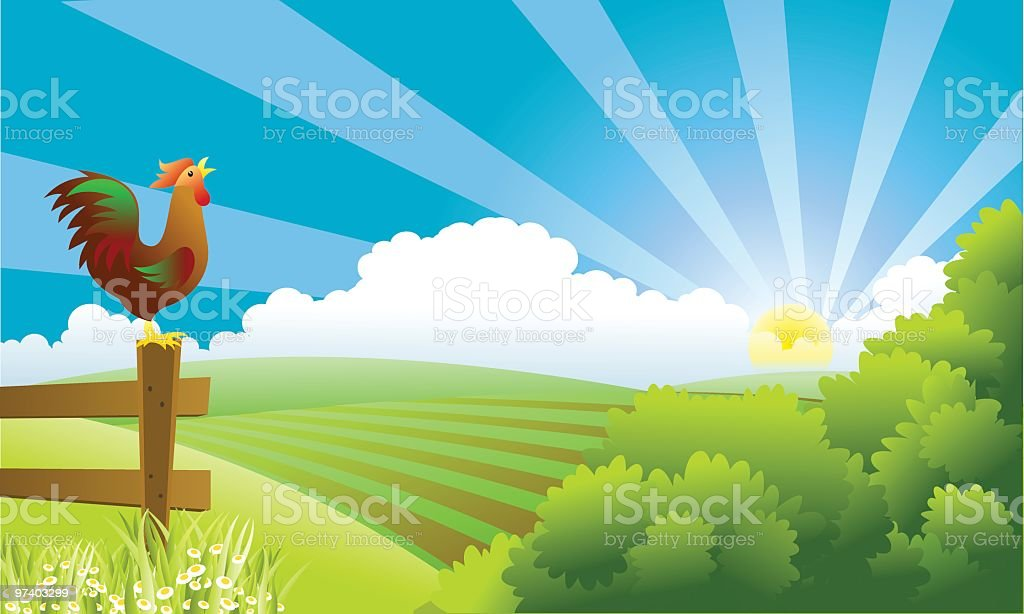 Rooster standing on fence post crowing as the sun rises vector art illustration