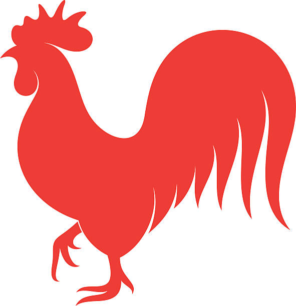Rooster. Symbol of New Year 2017 Vector illustration (EPS) rooster stock illustrations