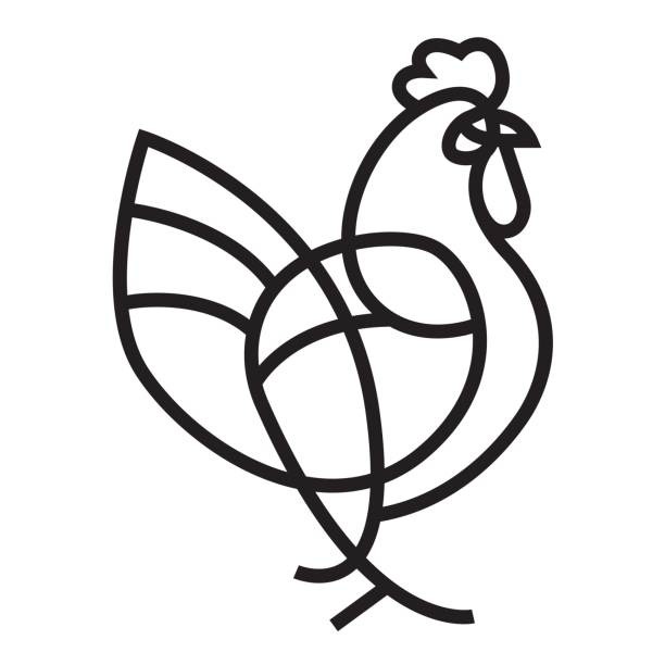 Rooster vector icon Rooster vector icon - Flat line geometrical illustration of cock for Year of the Rooster designs. cockerel stock illustrations
