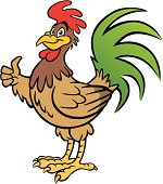 istock Rooster 165598184