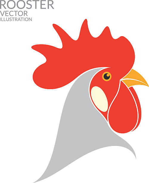 Royalty Free Rooster Head Clip Art, Vector Images ...