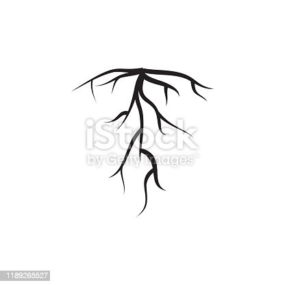 Root icon design template vecor isolated illustration