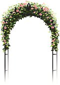 Soft pink roses growing on a wrought iron trellis or arbor, form a frame with copy space.