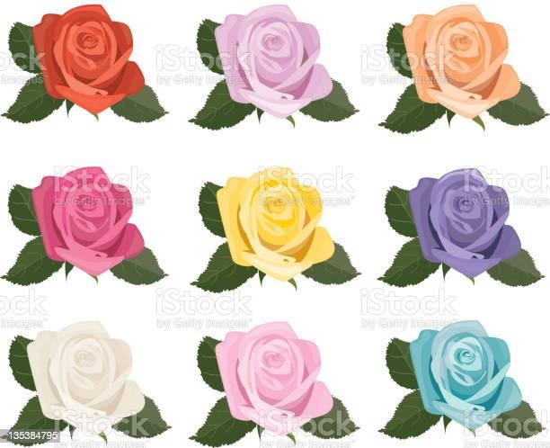 Rose blooms icons vector id135384795?b=1&k=6&m=135384795&s=612x612&h=jfj 1vh5 vpef2tyof6vtpopkjzvfpweqovzg99gm4i=