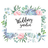 Rose, blue echeveria succulent, eucalyptus selection, brunia, wolf willow, pink flowers vector design card. Floral white frame. Spring wedding composition. All elements are isolated and editable.