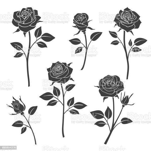 Rose buds vector silhouettes flowers design elements vector id695854376?b=1&k=6&m=695854376&s=612x612&h=tyxzbed0y 8qbqpsaz7vhbftbq3qh8ixdgkbz8ihux0=