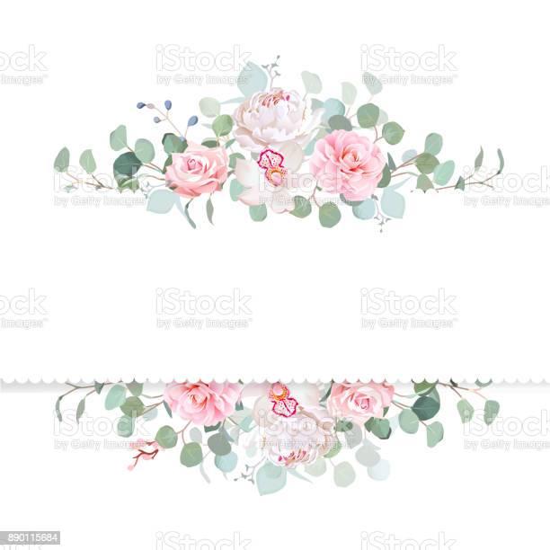 Rose camellia orchid peony silver dollar eucalyptus vector d vector id890115684?b=1&k=6&m=890115684&s=612x612&h=cwjzj1imfqj csl3mg2fdaav  lm psmo7p zpof9si=