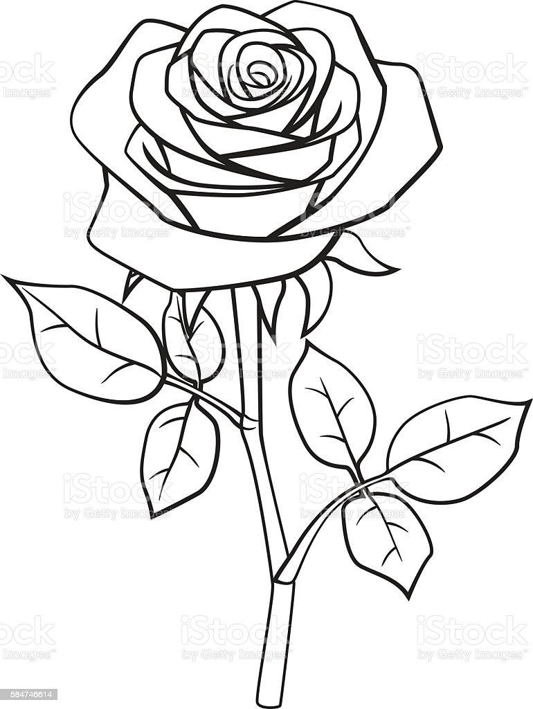 Cartoon rose black and white