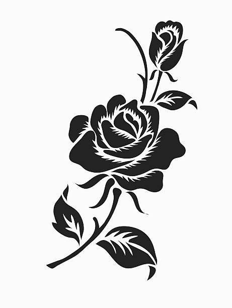 Rose design sketch for pattern. Rose design sketch for pattern,lace edge,flower motif flowers tattoos stock illustrations
