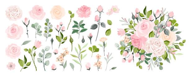 ローズ要素。ピンクの花の芽、緑の葉の花束とバラ、ヴィンテージグリーティングカードのための花のロマンチックな結婚式の装飾。ベクトルセット - 花点のイラスト素材/クリップアート素材/マンガ素材/アイコン素材