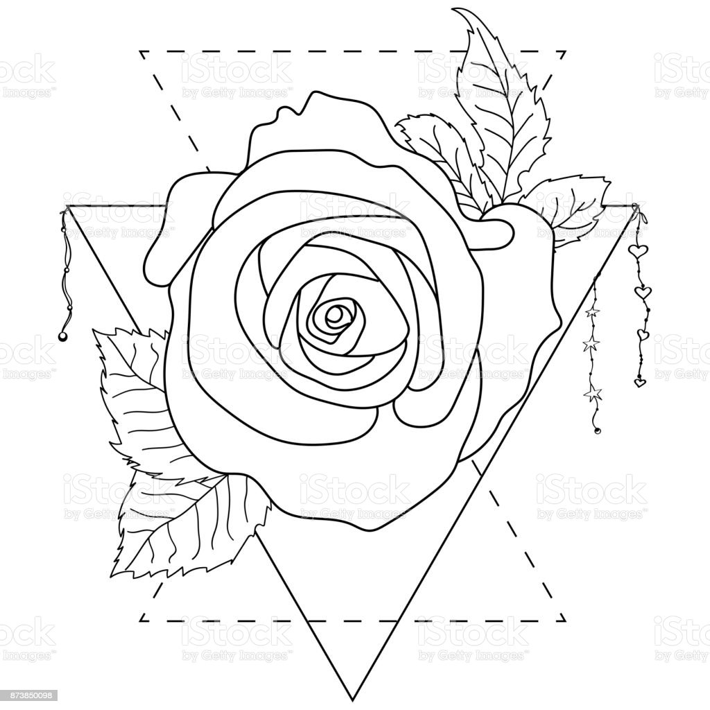 Rose Flower Detailed Vector Illustration Isolated On White Blackwork ...