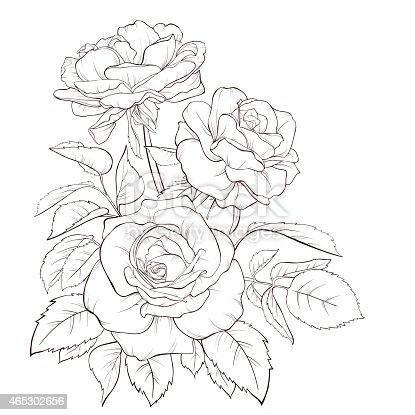 Rose Flower Handdrawn Contour Lines And Strokes Element
